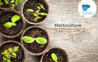 horticulture-dyslexia-advantage