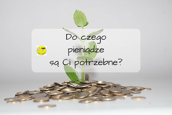Do czego pieniądze są Ci potrzebne?