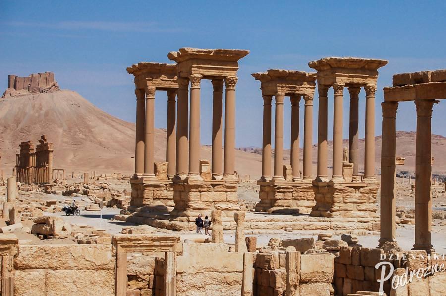 Palmyra / 2009 r.