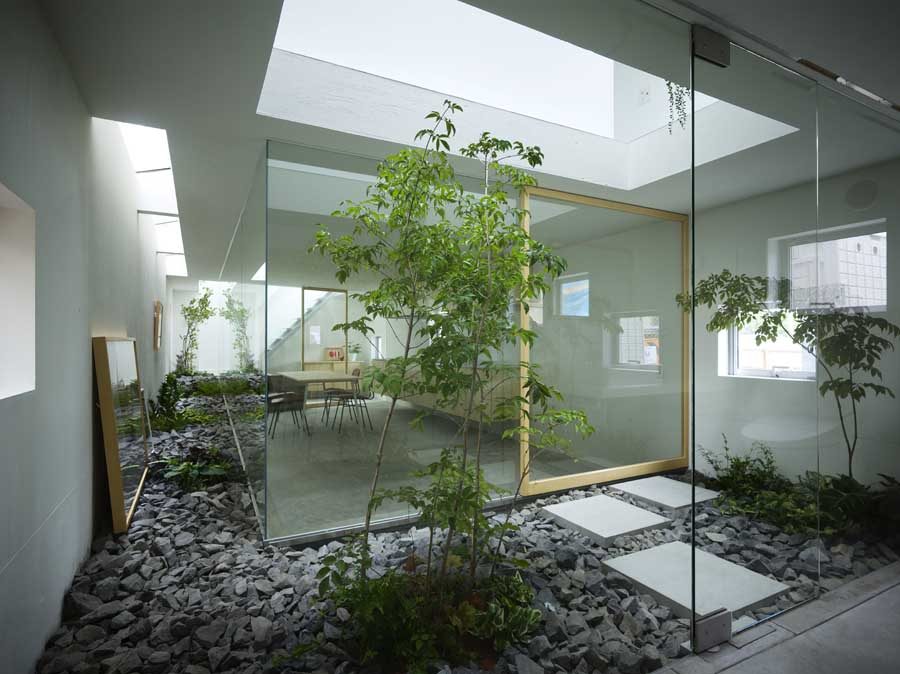 Small Patio Plants