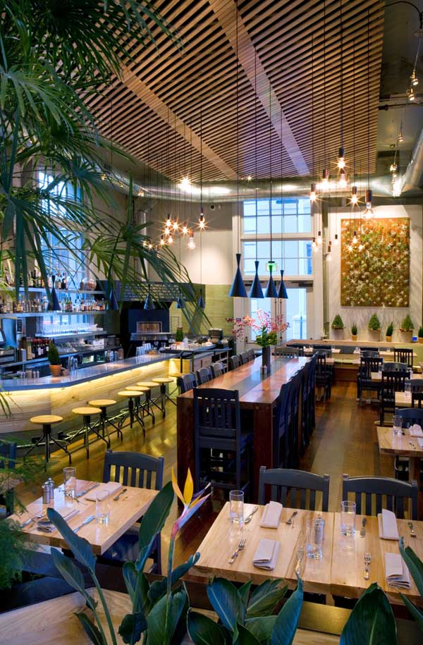 Fresh Natural Cafe San Francisco