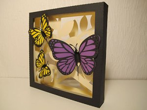 The Butterfly Shadow Box