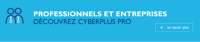 cyberplus professionnels