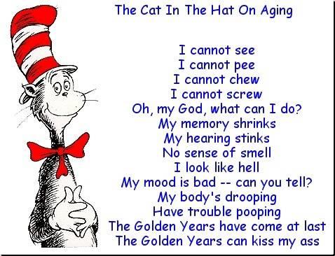 cat-in-the-hat-joke -33