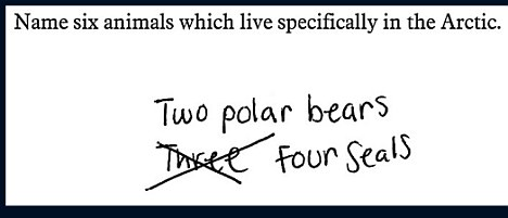 funny exam answers - 6