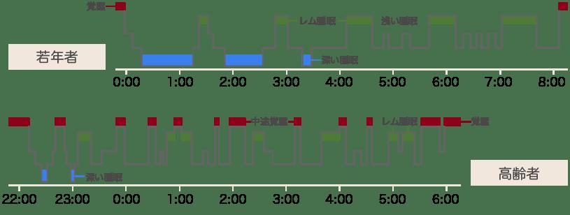 若年者と高齢者の睡眠の比較