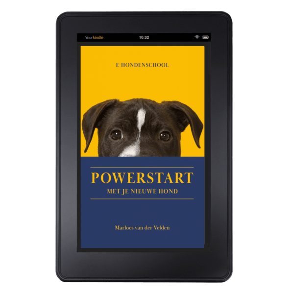 Powerstart met je nieuwe hond