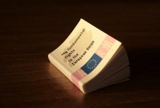 Afbeeldingsresultaat voor my fundamental rights eu