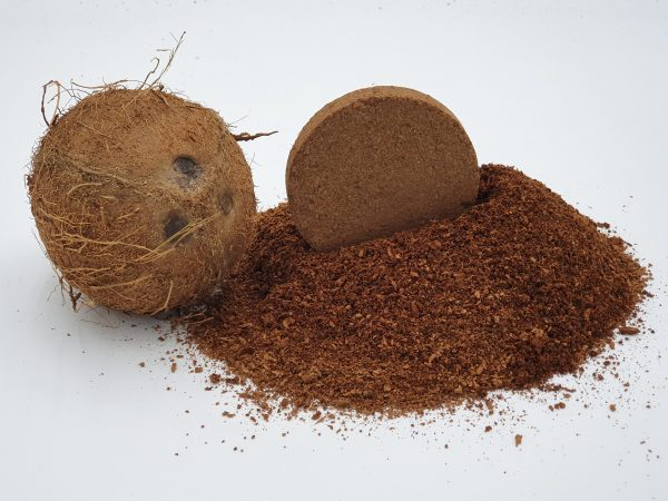 e-pots coir disc with coconut and pile of coir compost