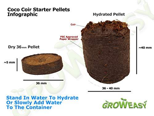 coir pellets infograph