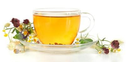 Vrbovka čaj