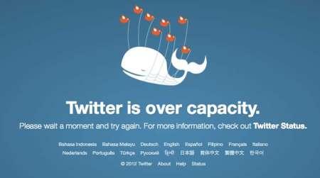 Ballena Twitter
