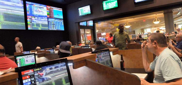 Soccer Betting Frenzy Begins in a Single Month