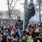 """SOS σταματήστε την αποδοχή προσφύγων αμέσως""- Rebecca Sommer εθελοντής συνοδός προσφύγων και βοηθός ενσωμάτωσης 2012 - 2020)"