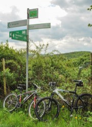 The Maare-Mosel cycle route is well signed