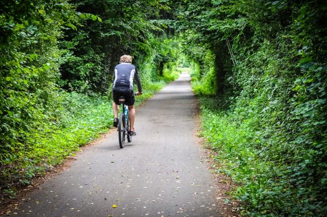 Many bike roads are car-free
