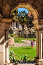 The Saint-Salvi cloister is a lush break from the bricks and stones
