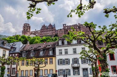 "View to Heidelberg castle from ""Karlsplatz"""