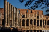 The Colosseum is the largest amphitheatre in the world and it was completed in AD 80 by Titus. He belonged to the Flavian Dynasty and thus the arena used to be called The Flavian Amphitheatre.
