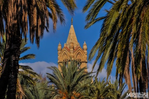 The towers of the cathedral though the palm trees at Villa Bonanno