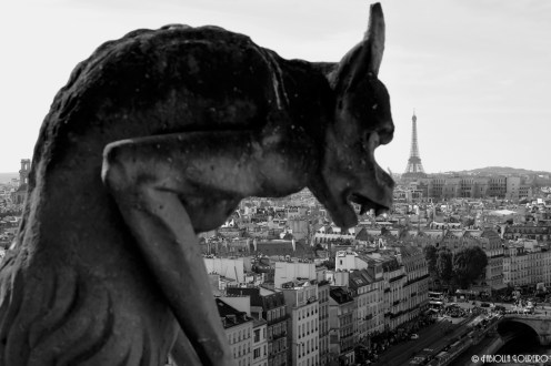 The fascinating gargoyle at the top of Notre Dame