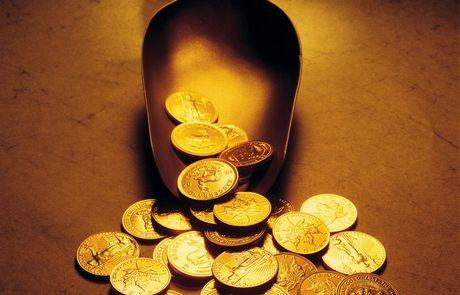 treasure-5206