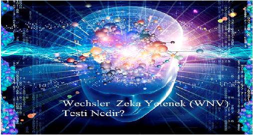 Wechsler  Zeka Yetenek (WNV)  Testi/Wechsler Nonverbal Scale of Ability WNV