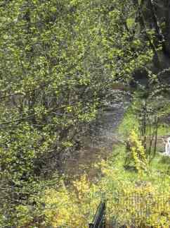 jardin-ruisseau