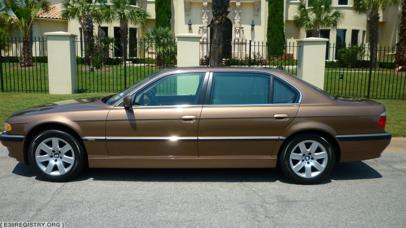ImpalaBrown.jpg?w=799