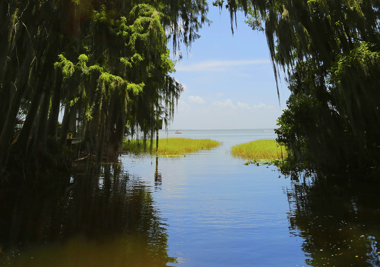 Image for Lake County