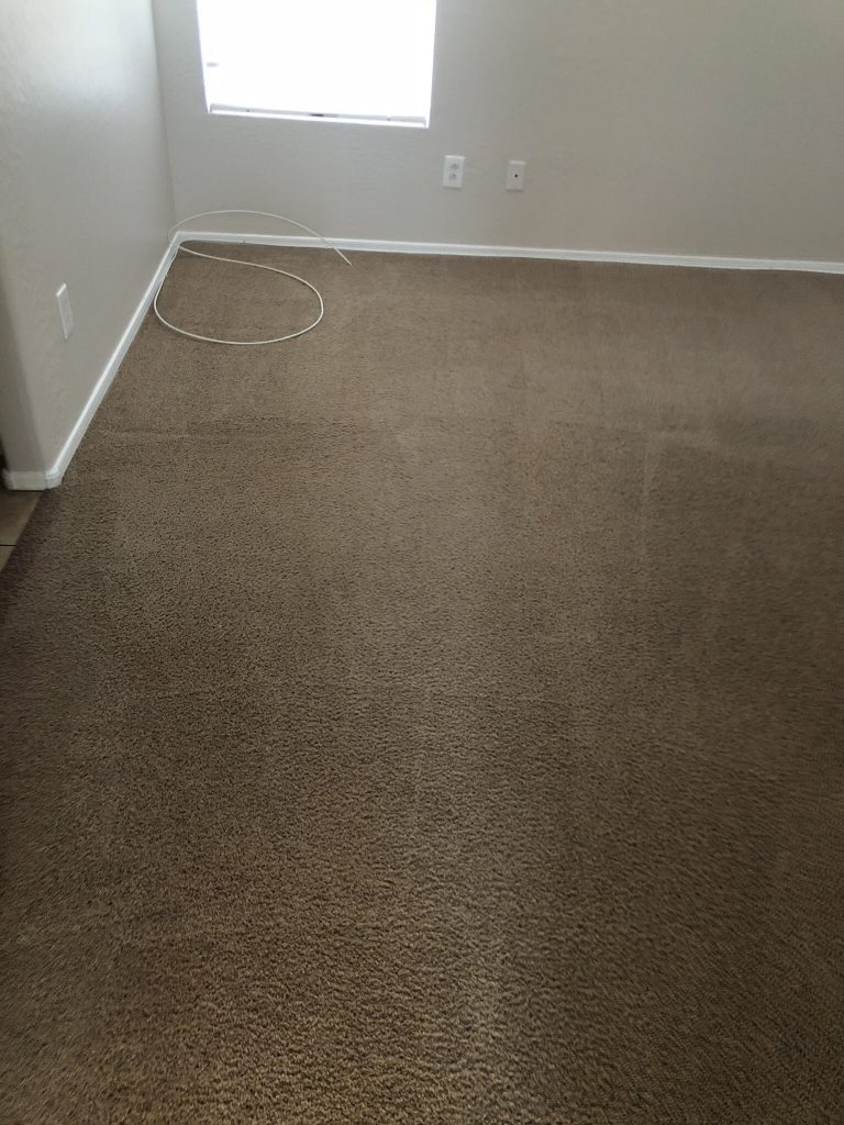 EA Restoration Carpet Cleaning Stain Free