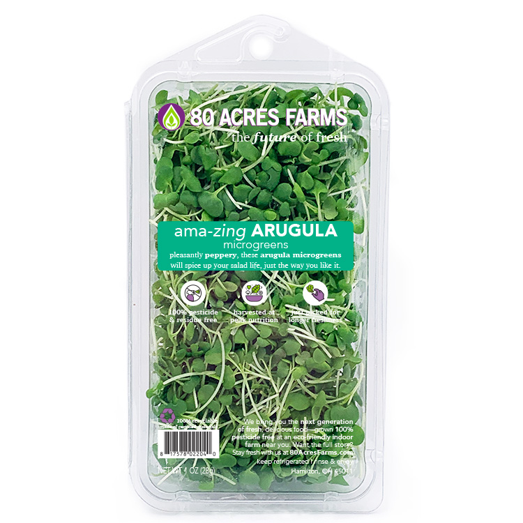 80 Acres Farms Amazing Arugula Microgreens