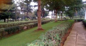 Islamic University in Uganda, IUIU Admission and Application Forms: 2019/2020 - How to Apply?