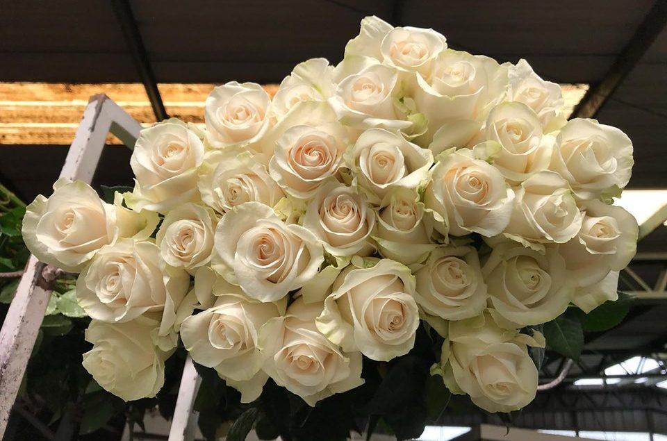 flower shop marketing