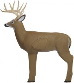 Big Shooter Buck