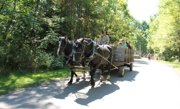 From the Assembly: Enjoy summer in Upstate New York