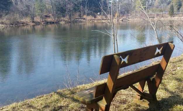 """Cazenovia College Presents """"BioBlitz"""" event on Carpenter's Pond"""