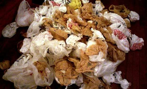 LETTER: Plastic bag ban isn't the answer to pollution problem