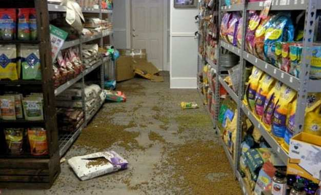Local pet supply store broken into and vandalized