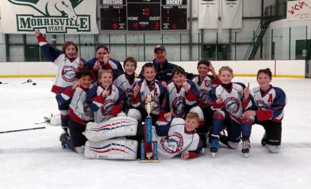 Area youth hockey team to play division game this Sunday
