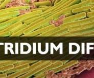 GAPS Diet Part II:  The Diagnosis….Clostridium Difficile