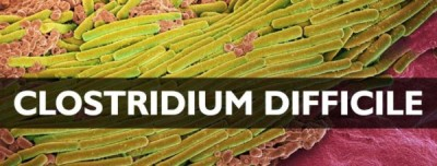 GAPS Diet Part II:  The Diagnosis….Clostridium Difficile