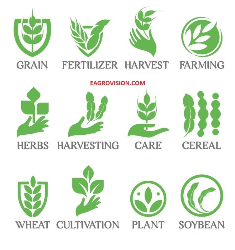 Agriculture definition