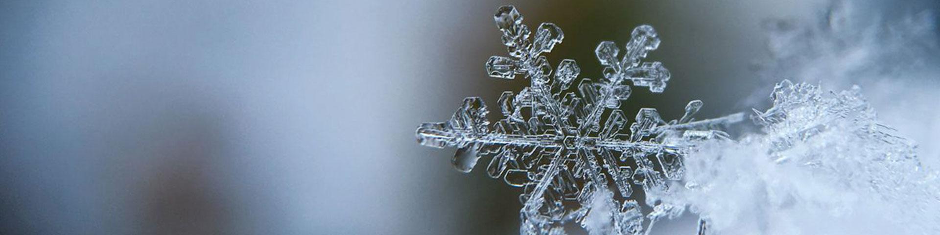 Close up of a snowflake