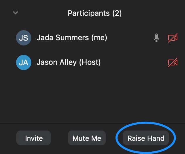Raise hand button in Zoom