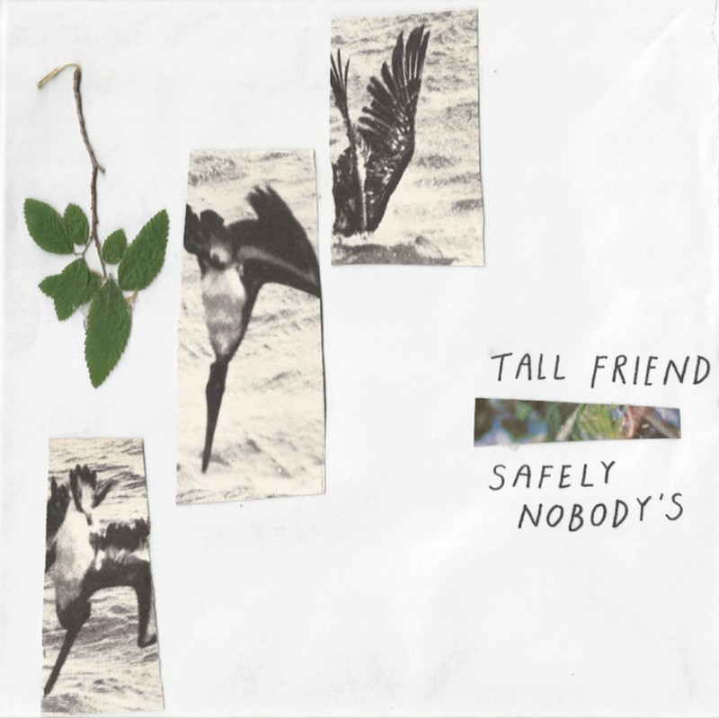 tall-friend-safely-nobodys
