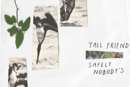 Tall Friend – Safely Nobody's Review