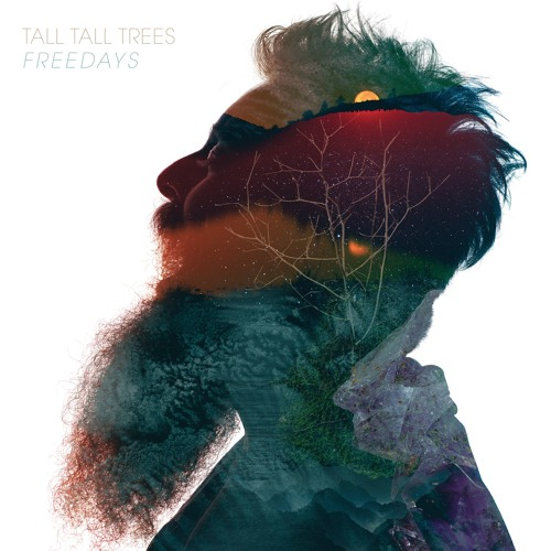 tall tall trees freedays