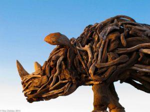 rhino 3