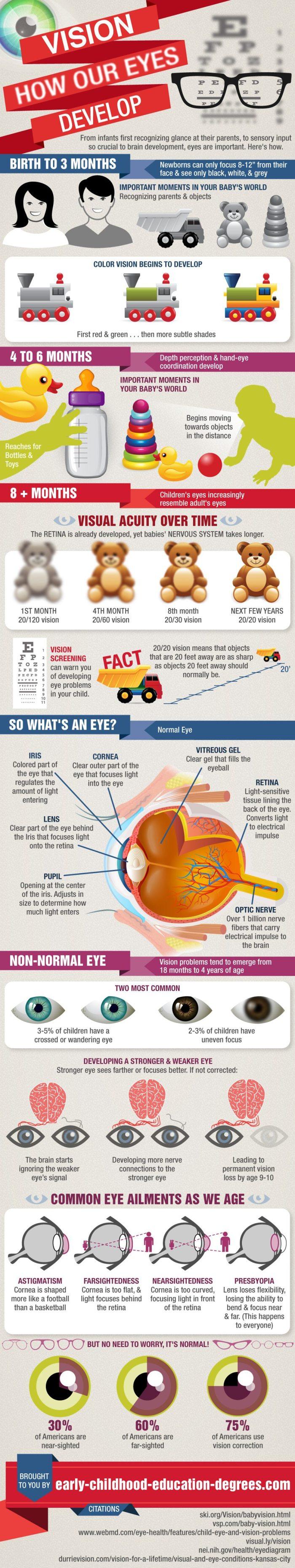 Eye Development width=